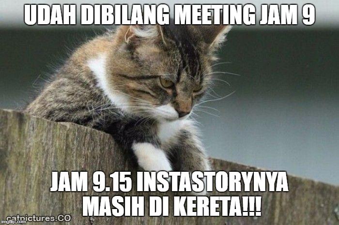 telat meeting